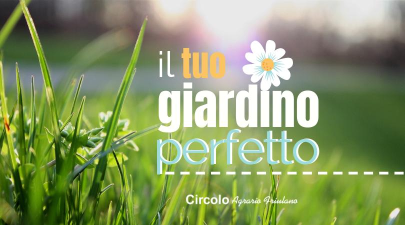 Il tuo giardino perfetto!
